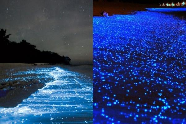 سواحل شب تابی بندر تنگ/ وادهو مالدیو